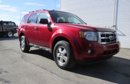 2009 Ford Escape XLT in Abitibi
